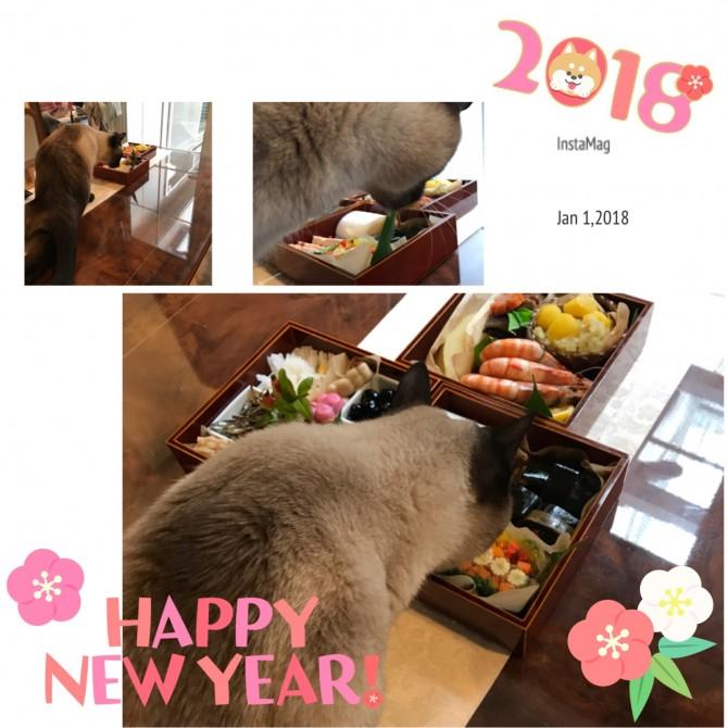 新年ブログ用